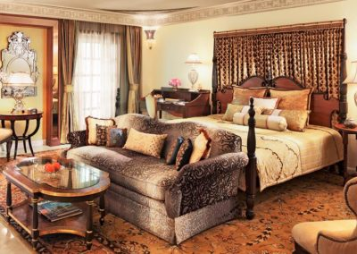 11. NWS RAMBAGH PALACE PALACE ROOM 1 SHOT