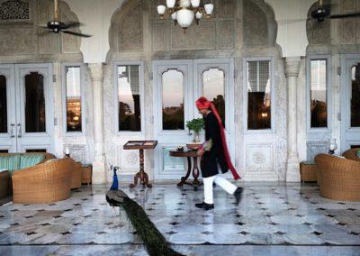 2. NWS RAMBAGH PALACE