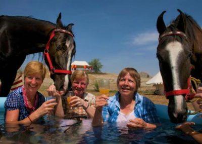 6. HORSE INDIA POOL PHOTO