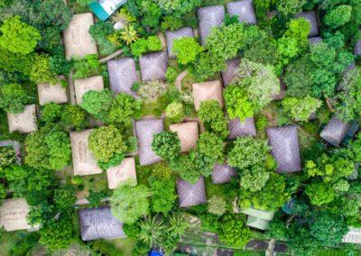 KOKOindia – Kerala – Plantations