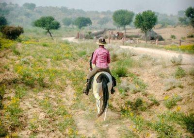 kokoindia_rajasthan_horse_safaris (5)